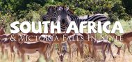 South Africa in Style with Out Adventures
