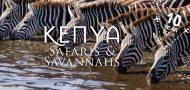 Tanzania Safari with Out Adventures