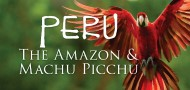 Peruvian Amazon & Machu Picchu with Out Adventures